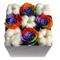 Trandafiri curcubeu stabilizati si flori de bumbac
