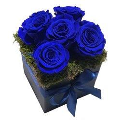 Aranjament 5 trandafiri nemuritori albastri