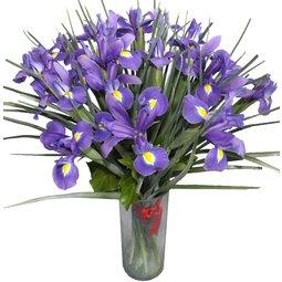 Buchet de irisi albastri