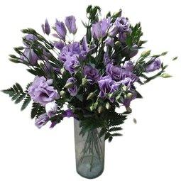 Flori de bucurie