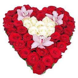 Inima de trandafiri albi in mijloc