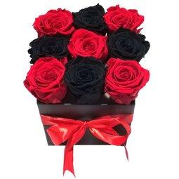 Simetrie in culori - rosu & negru