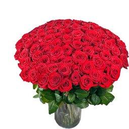 Trandafiri la puterea ... dragostei