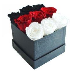 3 x trandafiri nemuritori