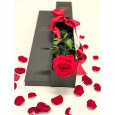 Amorosa FlorPassion Forever Roses