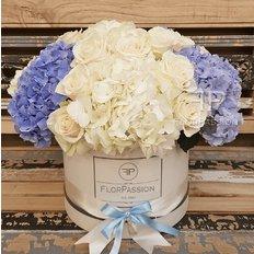 Hydrangea Flower Box | Same Day Flowers Milan Monza