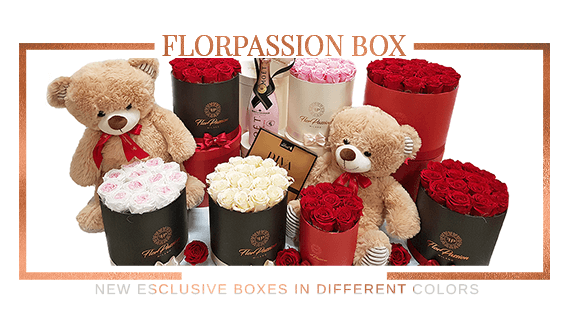 FlorPassion Box new Collection Preserved Roses
