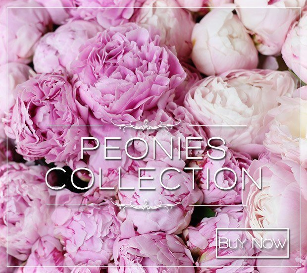 Luxury Peonies Collection 2018