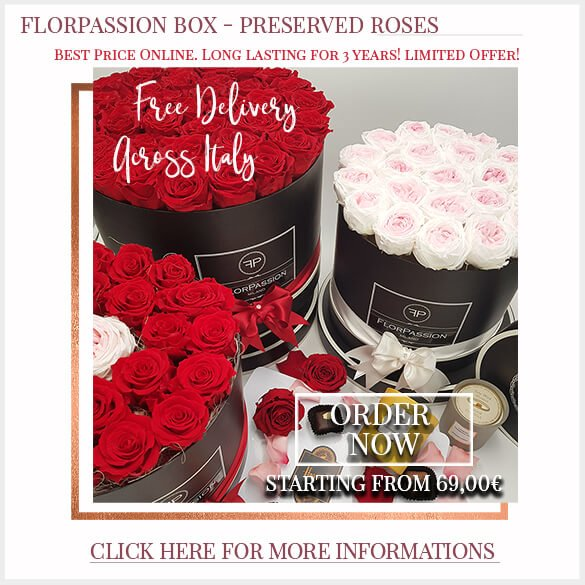 Preserved Roses Box Free Delivery across Italy