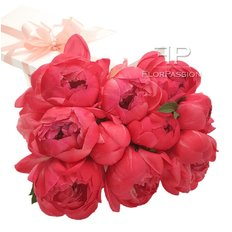 Flower Delivery Coral Peonies | Send Flowers to Milan and Monza