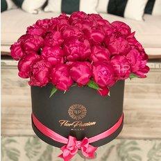 Burgundy Peonies Box | Best Milan Local Florist | FlorPassion