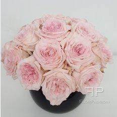 Pink O'Hara Rose Perfume