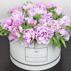 Pink Peonies Box