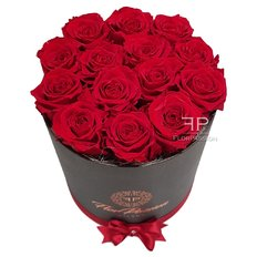 Preserved Red Roses | FlorPassion Milano | Million Roses