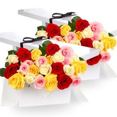 Four Dozen Multicolored Roses in a Gift Box