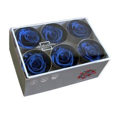 Royal Blue Preserved Roses, 6pcs