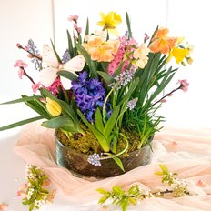 Spring Bulbs Vase | Easter Gift to Milan Monza Como | Slow Flowers FlorPassion