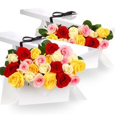 Three Dozen Multicolored Roses in a Gift Box