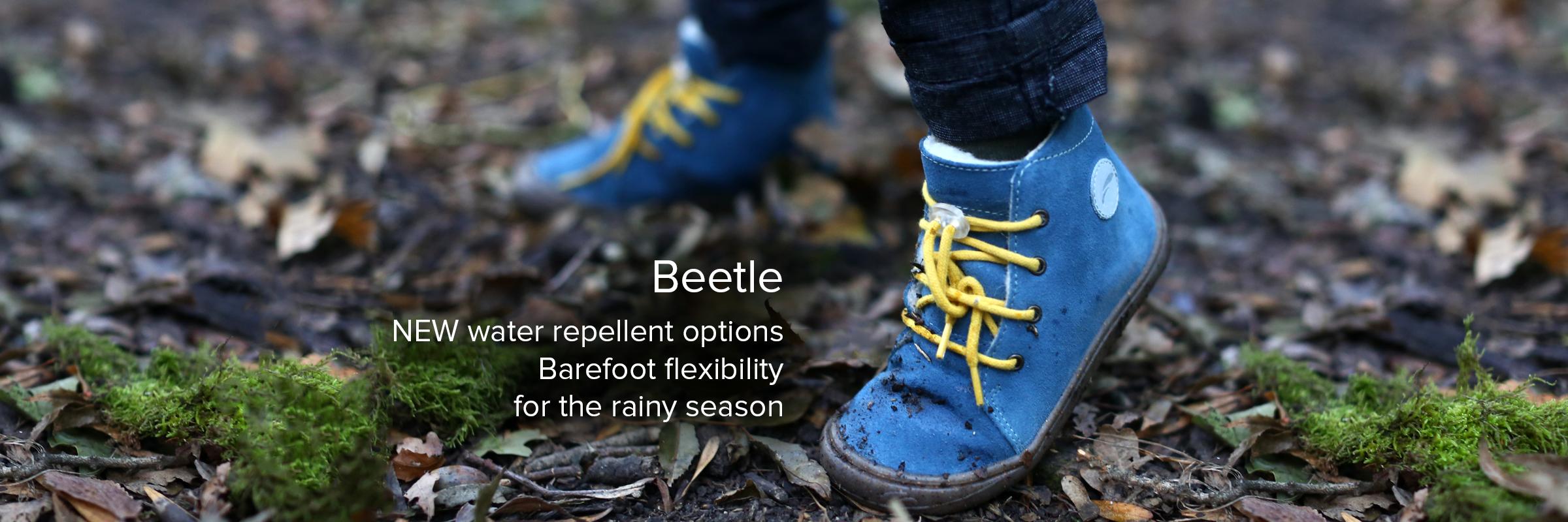 Beetle ENG
